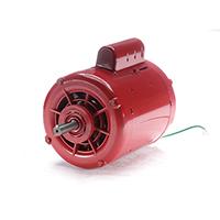 Electric Hot Water Circulator Pump Motor 115/230V 1725 RPM 1/2 HP