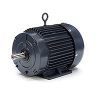 MARATHON Motor