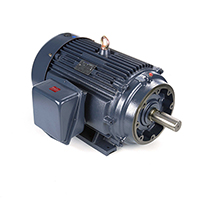 75 HP, 208-230/460 V, Totally Enclosed Fan Cooled (TEFC)